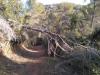 Gestió entorn natural municipi